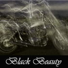 Profile picture of BLACK BEAUTY