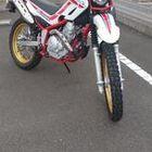Profile picture of ゴン助