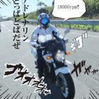 taro4848 さんのプロフィール写真