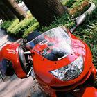 Yoshi さんのプロフィール写真
