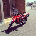 Profile picture of 新米ライダー君