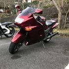 Profile picture of とし